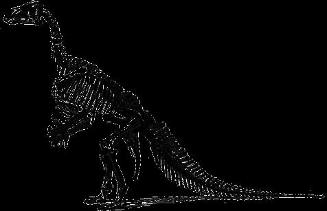 tyrannosaurus-148320_1280